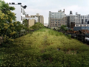 High Line dominado pela vegetação