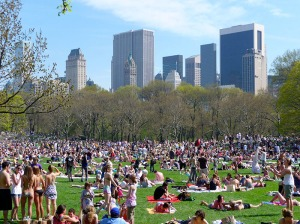 Sheep Meadow no alto verão
