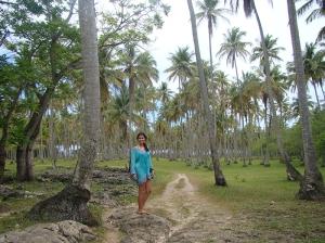 Fazenda de Coqueiral